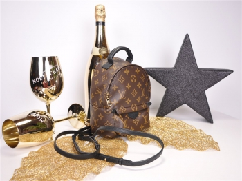 LOUIS VUITTON Palm Springs Mini Monogram M41562 - FULLSET*